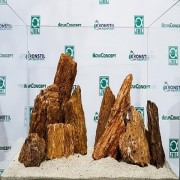 Piatra Myanmar Wood - Kg
