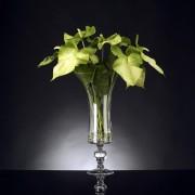 Aranjament floral design LUX ANTHURIUM 1141343.95