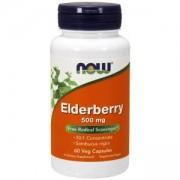 Екстракт от Бъз 500 мг. - Elderberry Extract - 60 капсули - NOW FOODS, NF4667