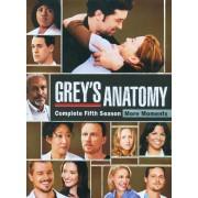 Grey's Anatomy: Complete Fifth Season [7 Discs] [DVD]