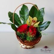 Minicos floral Simplitate CF039