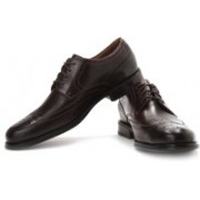 Clarks Dino Limit Party Wear For Men(Brown)