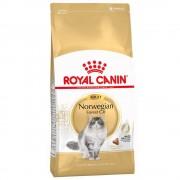 - 2 x 10 кг Royal Canin Norwegian Forest Cat Adult храна за котки