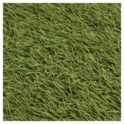 Gazon Artificial Summer 30, Verde, 4 m