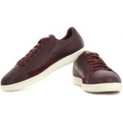 Puma Match 74 Sneakers For Men(Maroon)