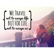 we travel sticker poster|travelling quotes|for travellers|size:12x18 inch|multicolor