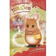 Animalute magice din Padurea Prieteniei 2 Unde s-a ascuns soricuta Molly - Daisy Meadows