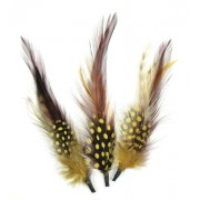Touch of Nature 3-Piece Natural Feather Pick with Nylon Loop, Gold, Wine, 4-Inch, Natural