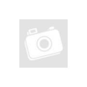Trixie 2-utas szabad lengőajtó kutyáknak- állatfelszerelés