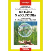 Copilaria si adolescenta. Provocari actuale in psihologia educatiei si dezvoltarii (eBook)