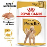 Royal Canin Breed 24 x 85 g - Yorkshire Terrier