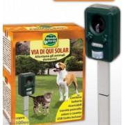 Aparat electric solar cu ultrasunete pentru alungarea câinilor și pisicilor pentru o suprafață de până în 100 mp.