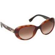 Emilio Pucci Cat-eye Sunglasses(Brown)