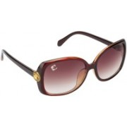 Clark N' Palmer Over-sized Sunglasses(Brown)