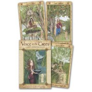 Voice of the Trees: A Celtic Divination Oracle [With Paperback Book]