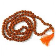 5- Mukhi Rudraksha Mala ( 108+1 beads ) Natural Rudraksha Bead Mala free Gaumukhi For Jaap