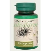 DACIA PLANT XANTOPROSTAL = HERBOPROSTAL 60 comprimate