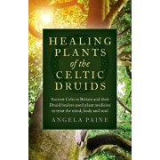 Healing Plants of the Celtic Druids: Ancient Celts in Britain and Their Druid Healers Used Plant Medicine to Treat the Mind, Body and Soul, Paperback/Angela Paine