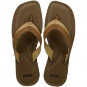 Puma Men's Brown Flip Flops