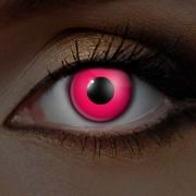Rosa UV Linser