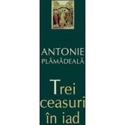 Trei ceasuri in iad - Antonie Plamadeala