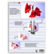 Difox Olympia Laminat DIN A4 125 Micron - 100 st