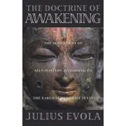 The Doctrine of Awakening, Paperback