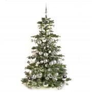Xmasdeco Luxe kunstkerstboom zilver en helder 180cm