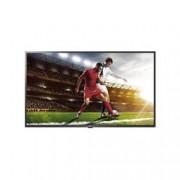 LG ELECTRONI 43 LED IPS 3840X2160 16 9 300NIT 8MS HDR10 HLG