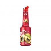 Mixer - Pulpa Papaya 100% Concentrat Piure Fructe 1l