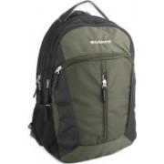 Aristocrat 15 inch Laptop Backpack(Black, Green)