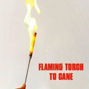 Flaming Torch To Cane Magic Light Fire & Transform To Cane Trick (Cane Required)