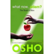 What Now, Adam?: The Book of Men, Paperback