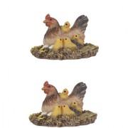 Wonderlnad Miniature fairy garden Hen and chicks ( Set of 2) (4 x 4 x 3 cm)