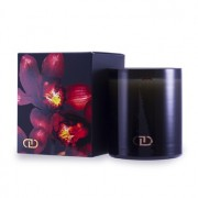 DayNa Decker Exotic Multisensory Candle with Ecowood Wick - Ashiki 170g - Home Scent
