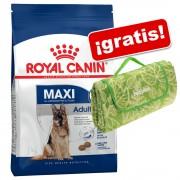 Royal Canin Size 15 kg + Manta de pícnic ¡gratis! - Maxi Puppy / Junior Active (15 kg)