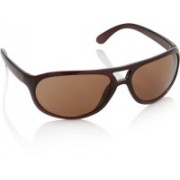Sunmate Oval Sunglasses(Brown)