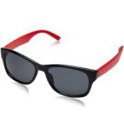 Lisburn Wayfarer Sunglasses(For Boys & Girls)