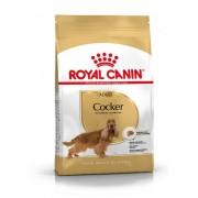 Royal Canin hrana za pse Cocker Adult 3kg