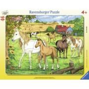 Puzzle Copii 4Ani+ cai la ferma, 46 piese