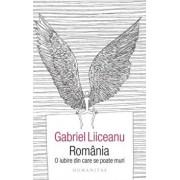 Romania,o iubire din care se poate muri/Gabriel Liiceanu