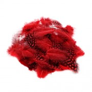 Magideal 50PCS Lots Dyeing Guinea Hen Feather Feathers 5-10cm Red