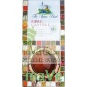 Condiment Piper Cayenne 40 Gr Bio Longevita Solaris Plant