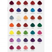 4 x TUBS DIRECTIONS Hair Dye/Colour CHOOSE ANY COLOURS by La Riche