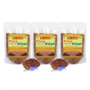NutrActive Flaxseed / Flax Vital / Roasted and Salted Flaxseed Fatty Acid - Pack of 3 ( 300 gm each)