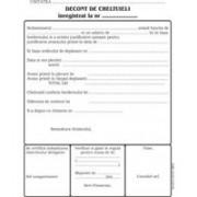Formular Decont cheltuieli, 3 carnete/set