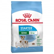 Royal Canin Mini Starter - Pack % - 2 x 8,5 kg