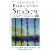 Romancing the Shadow, Paperback