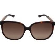 Jimmy Choo Wayfarer Sunglasses(Brown)