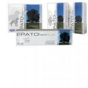 DRN Srl Epato Pasta Plus Mang Compl (912799741)